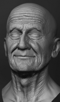 Schäfer Face Sculpt